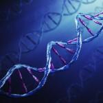 Медитация изменяет наши гены.  Научные свидетельства