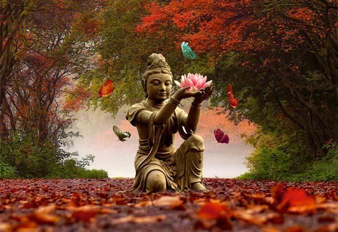 meditação-e-aromaterapia (1)