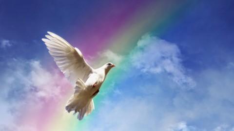 Божественное Триединство. Наша Суть, которой нам предстоит стать